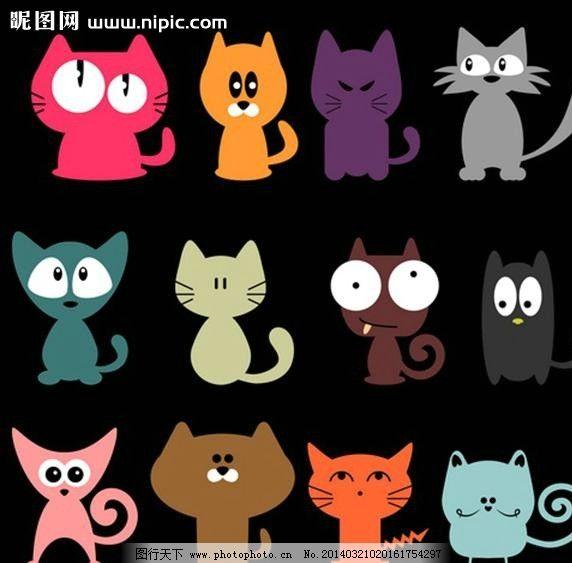 小猫猫咪宠物cat图片_其他