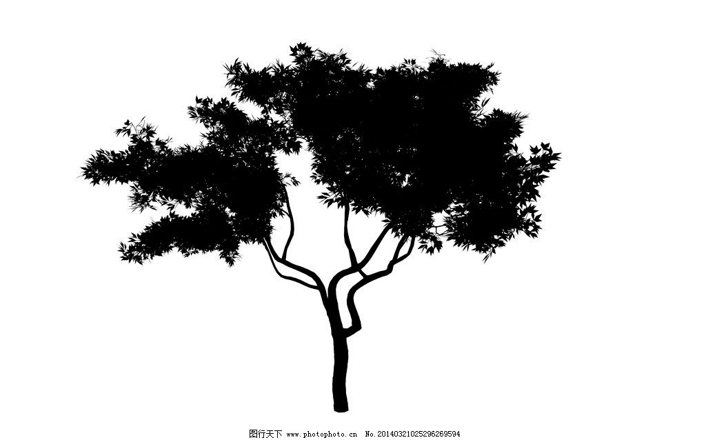 植物剪影 植物 树木 绿化 大树 树叶 树枝 树干 植物立面图 树木树叶