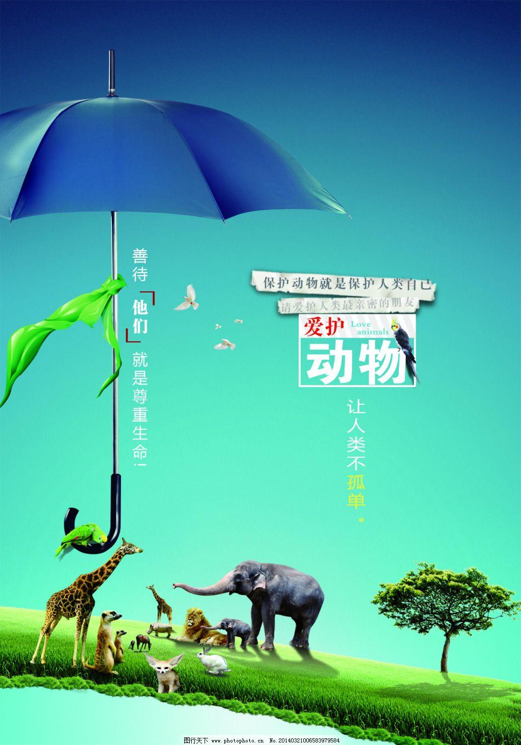 爱护动物 爱护动物免费下载 公益 海报 环保公益海报