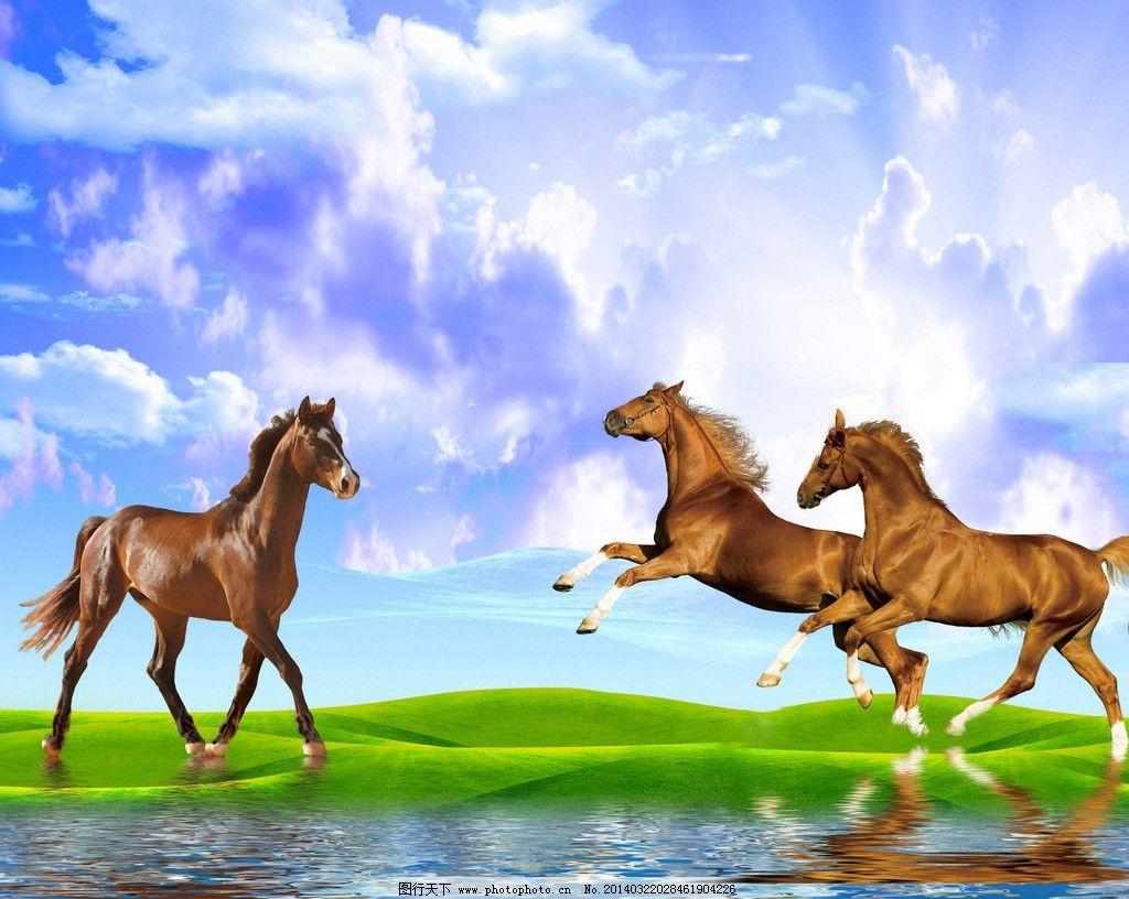 马 风景画图片