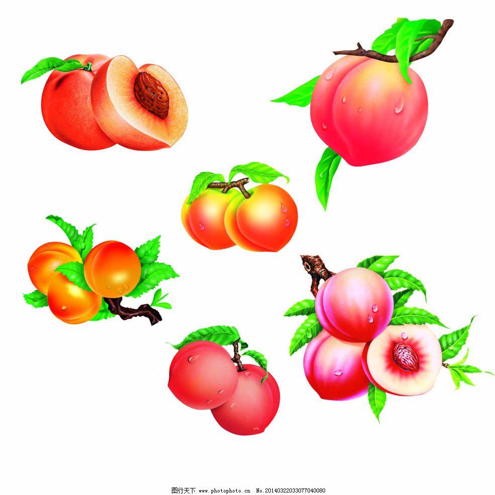 手绘水果桃子