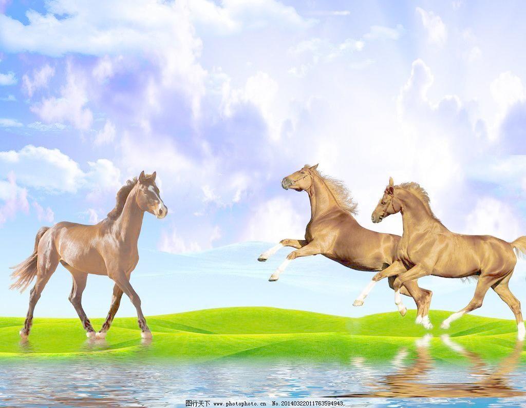 草原 风景画 环境设计 蓝天白云 青草 设计 无框画 马 风景画设计素材