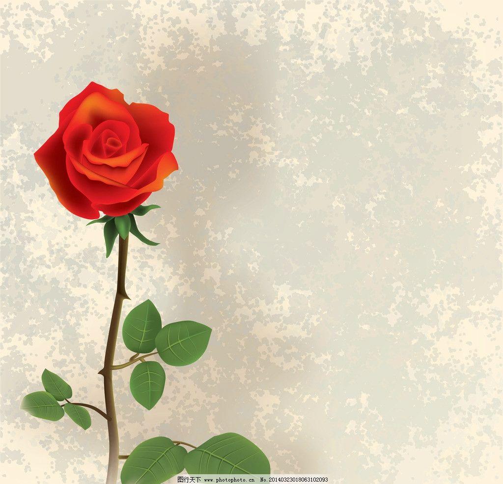 玫瑰花 手绘花卉 粉红色玫瑰花 绿叶 红玫瑰 情人节 春天 春季