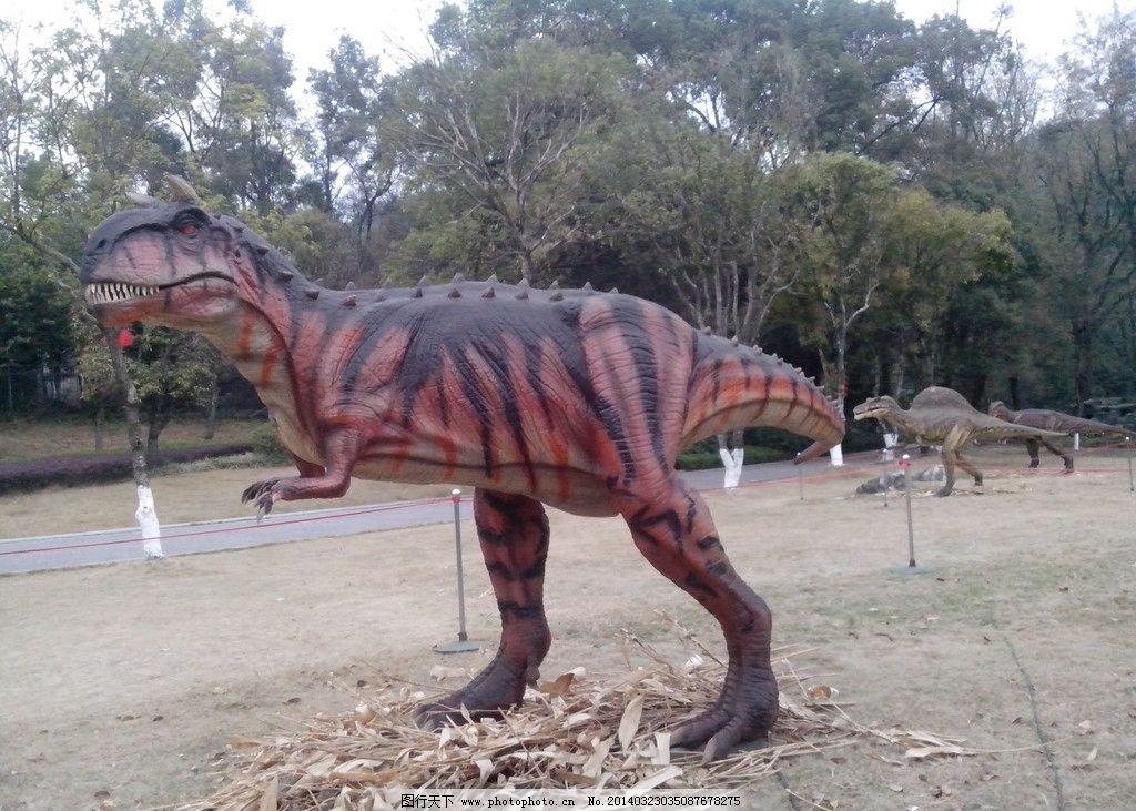 牛龙 恐龙 仿真恐龙 侏罗纪恐龙 野生动物 生物世界 摄影