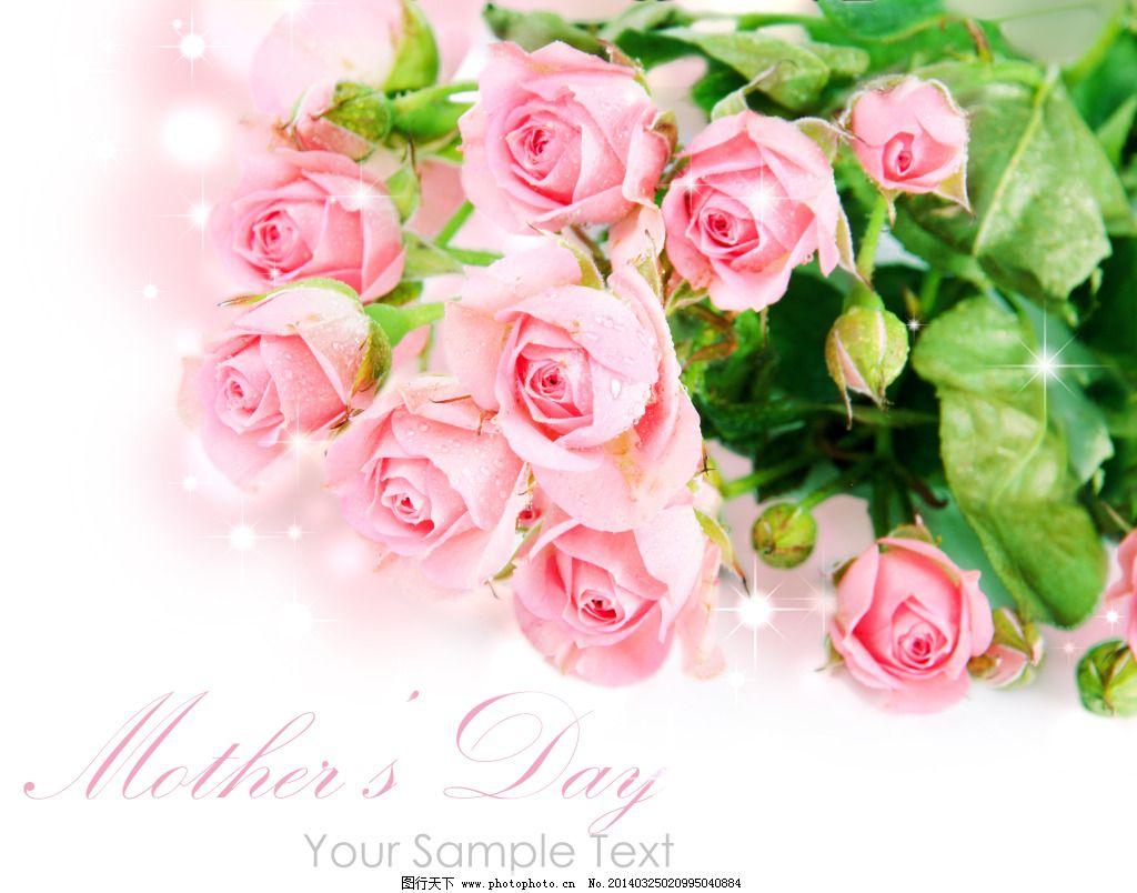 母亲节玫瑰花图片