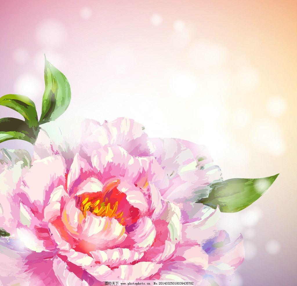手绘牡丹花 手绘花卉 水墨花卉 绿叶 鲜花 油画 花瓣 花草背景