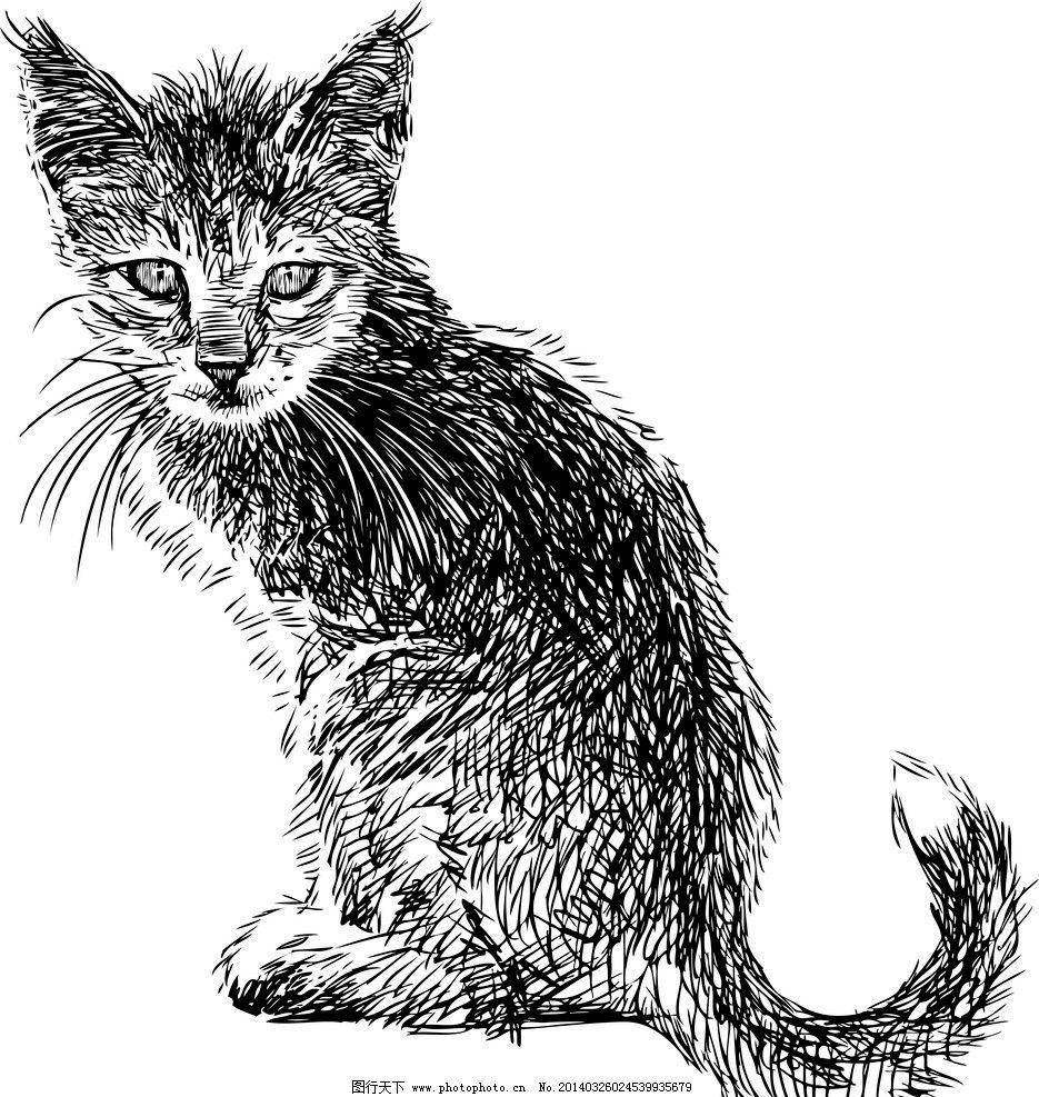 手绘猫 手绘动物 手绘