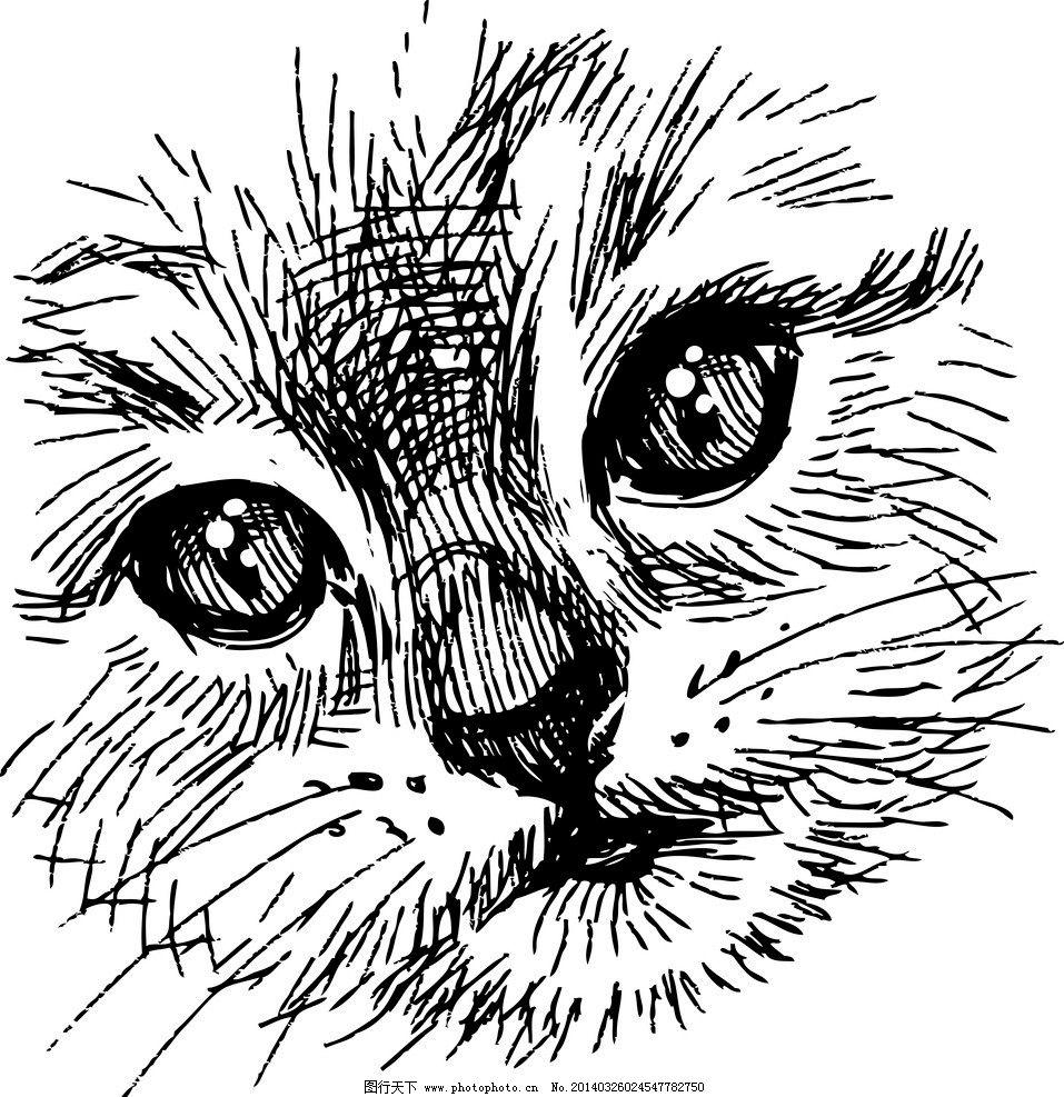 手绘猫 手绘动物 手绘 线描 素描 猫 宠物猫 宠物 猫咪 矢量 美术绘画