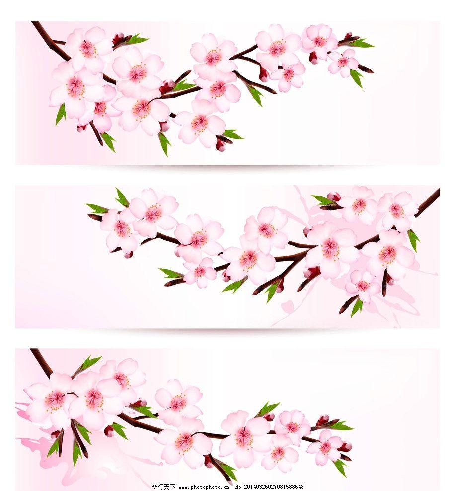 樱花 桃花 春季 横幅 绿叶 手绘 背景 精美 卡片 名片 花卉