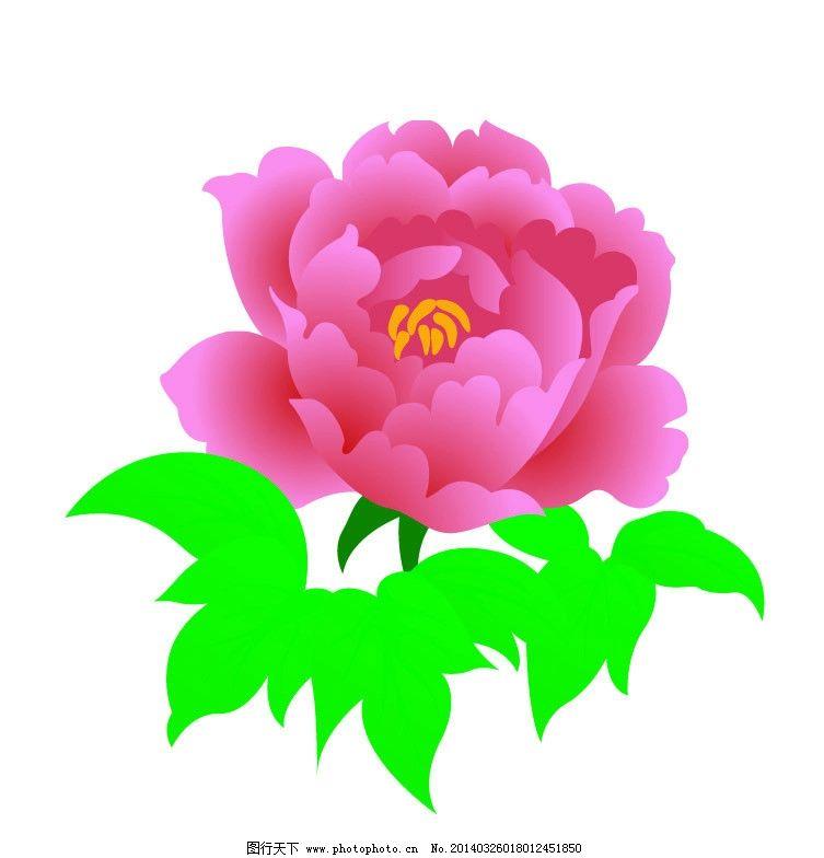 牡丹 牡丹花 鲜花 绿叶 红花 花叶 花草 生物世界 矢量 ai