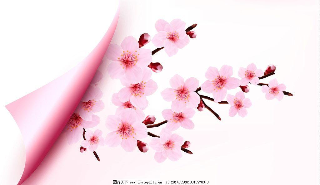 桃花 春季 横幅 绿叶 手绘 背景 精美 樱花 花卉 时尚花纹