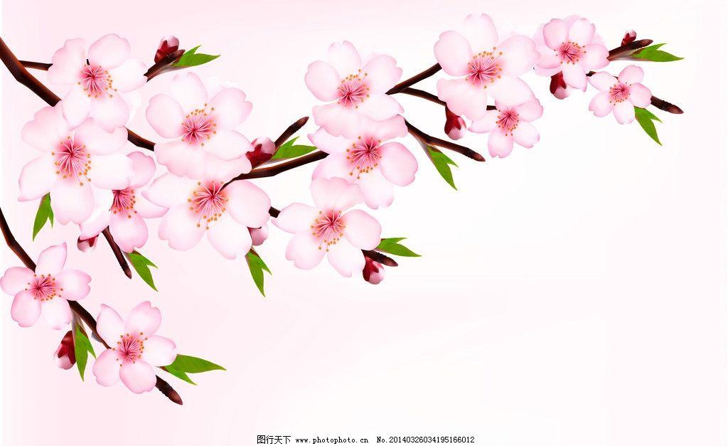 樱花 桃花 春季 横幅 绿叶 手绘 背景 精美 花卉 时尚花纹