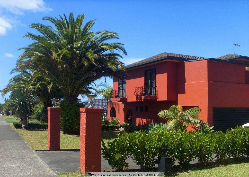 新西兰风景 蓝天 白云 绿树 棕榈树 绿地 建筑 别墅 道路 新西兰风光