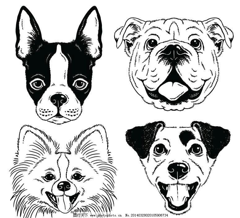 小狗 狗狗 吉娃娃 狮子狗 卡通动物 动画动物 动画设计 动物设计 时尚