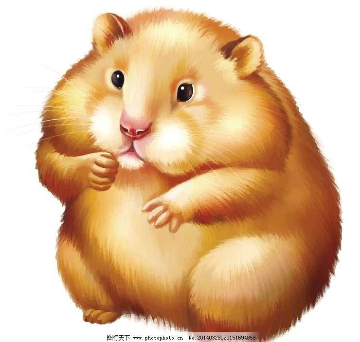 仓鼠卡通动物设计动画图片
