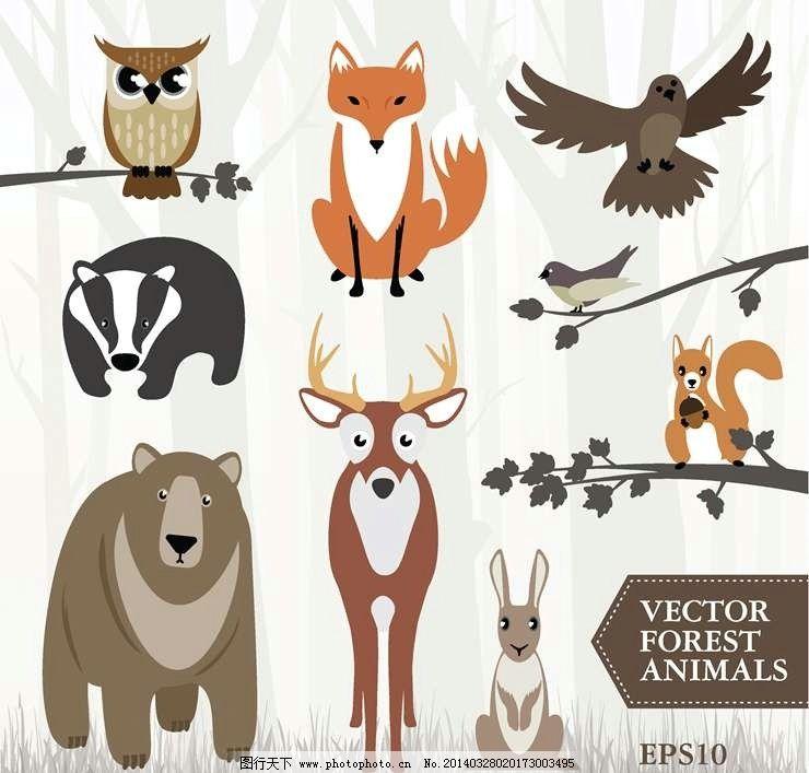 卡通动物设计动画动物 猫头鹰 狐狸 老鹰 小鹿 兔子 松鼠 卡通动物