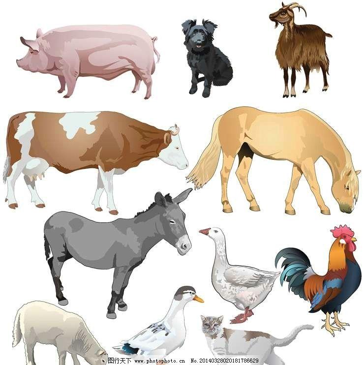 设计图库 标志图标 其他  卡通动物设计动画动物 猪 够 山羊 奶牛 马