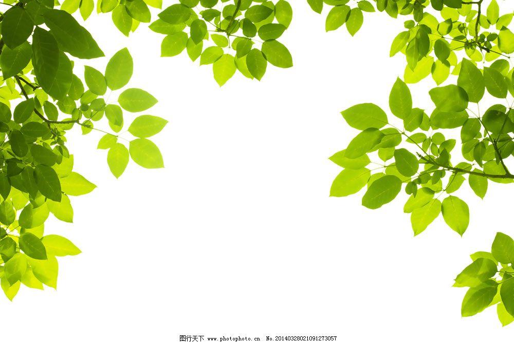 环保素材边框背景图片