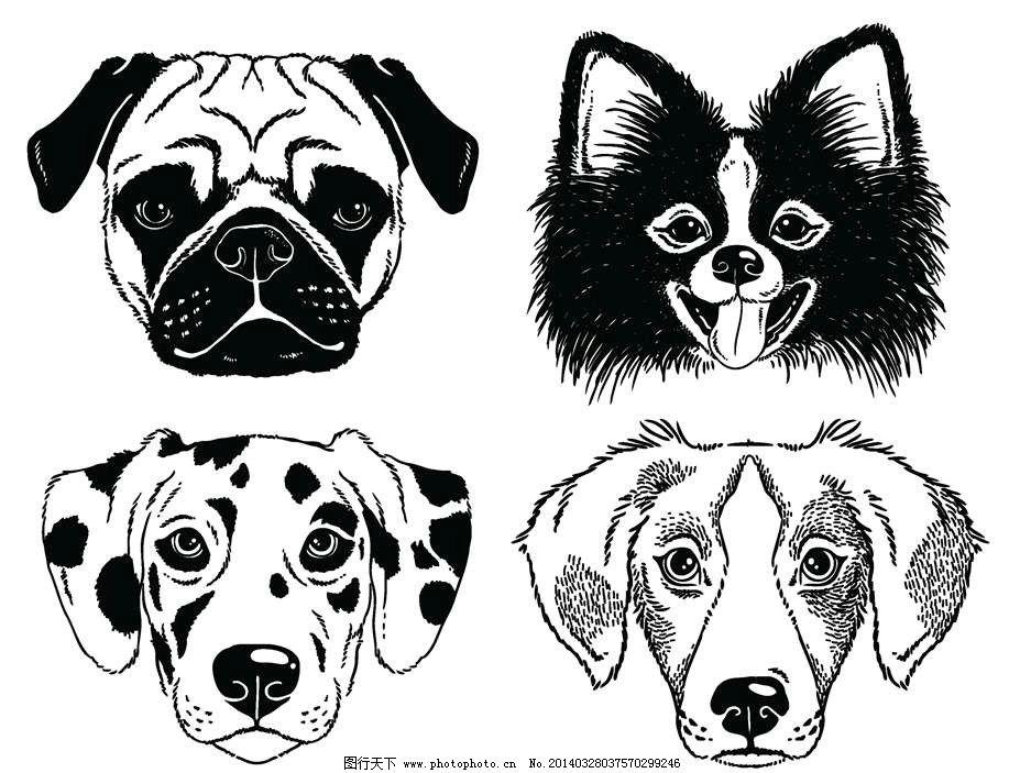 狗狗卡通动物设计动画 狗狗 小狗 哈巴狗 斑点狗 金毛 卡通动物 动画
