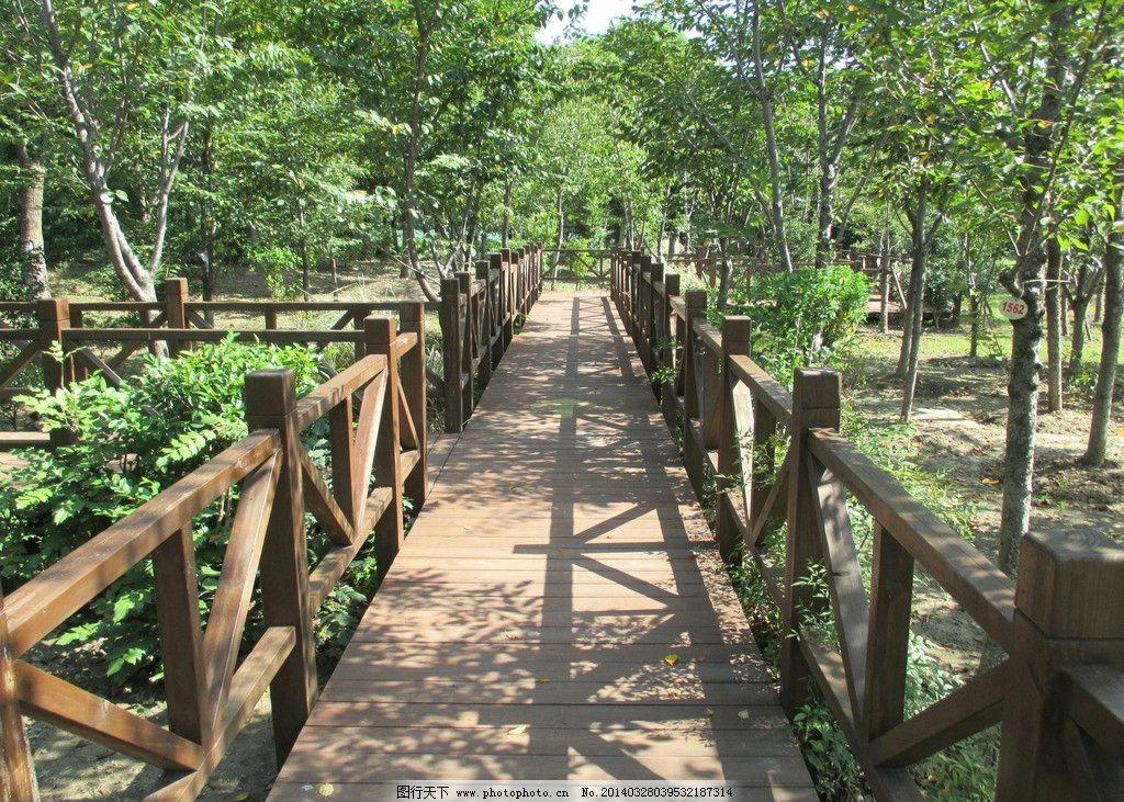 木桥建筑 木桥 木栏杆 树木 木板 木板小路 园林建筑 建筑园林 摄影