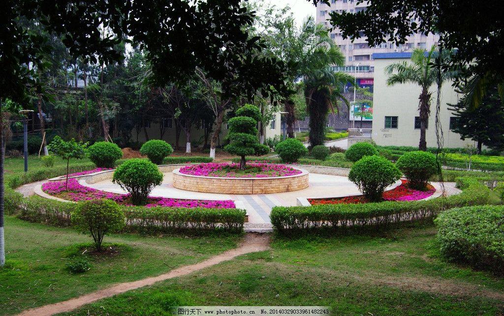 花坛景观 城市绿化 社区绿化 圆形花坛 花木 草木 树木 楼墙 天空