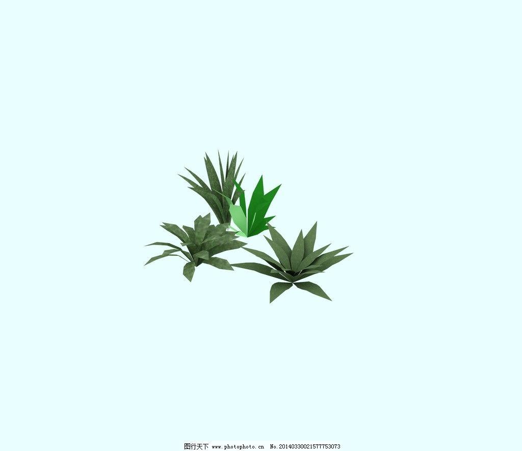野生植物图片_其他_3d设计_图行天下图库