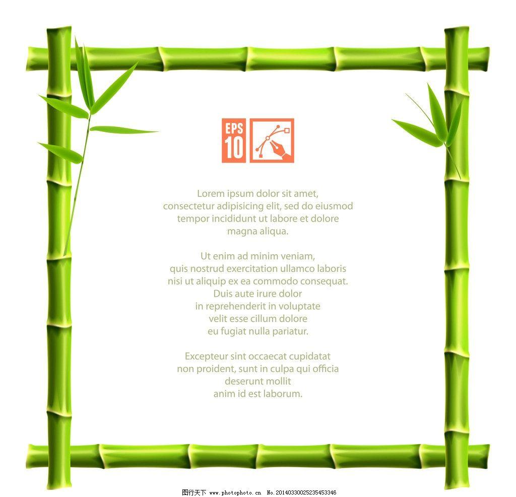 竹子图片图片