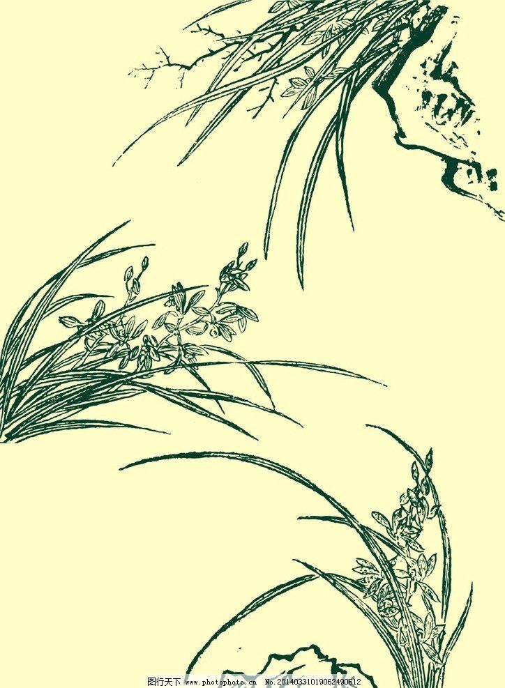 国画兰花 国画 山水画 水墨画 兰花 兰草 花草 山石 岩石 石头 植物