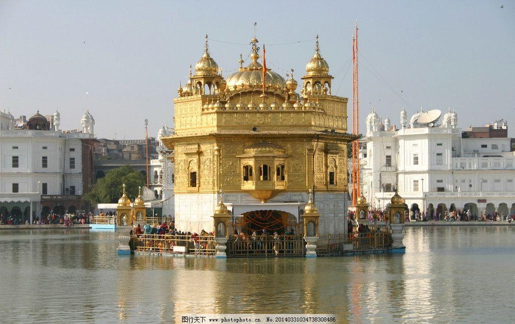 印度 阿姆利则 金庙图片